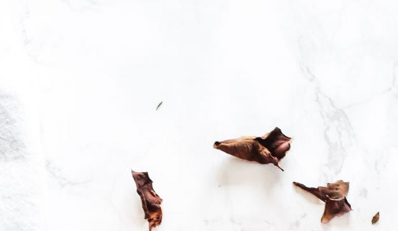 Warmer Rosenkohlsalat mit Quinoa