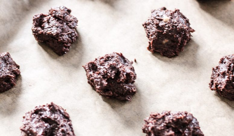 Vegan Monday – softe Schoko-Kekse (glutenfrei)
